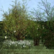 Mariagrazia Pontorno. Il giardino di Maresa