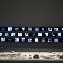 Speciale 56ª Biennale di Venezia