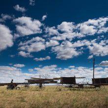 LAM 360° - Land Art Mongolia. La quarta edizione della Biennale in Mongolia: intervista a Valentina Gioia Levy di Luisa Galdo.